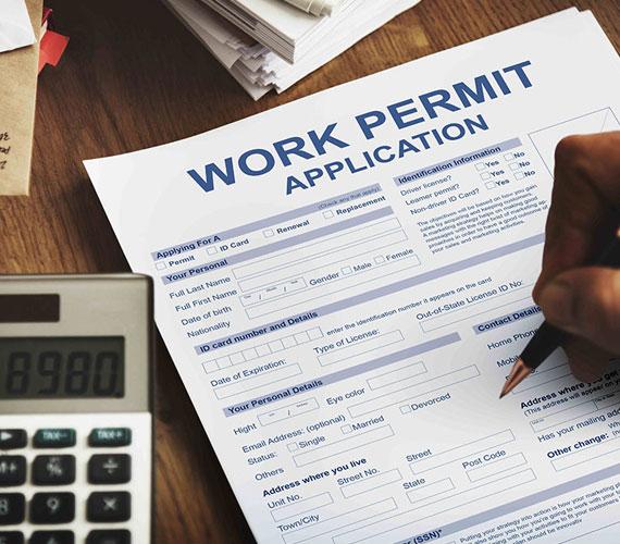 Buy Work Permit Online